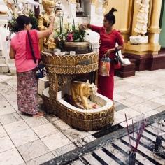 Tiger - mein buddhistisches Zeichen